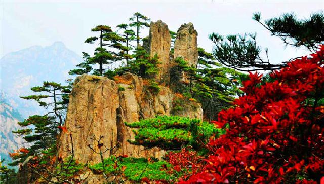 2014年黄山最全旅游攻略,想要去的同学可要好好收藏啦!