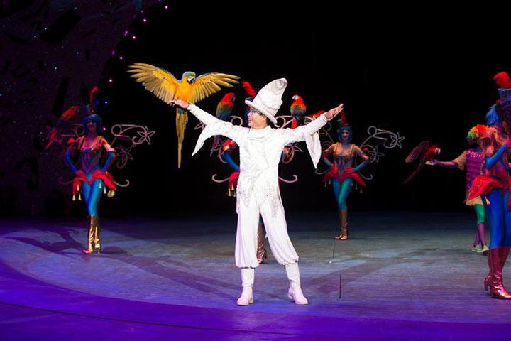 俄罗斯国际马戏节降临深圳动物园