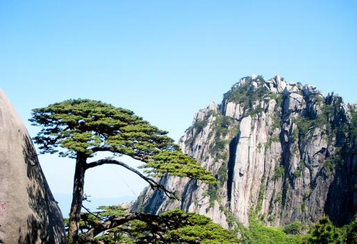 黄山旅游该懂点啥_黄山风景区攻略