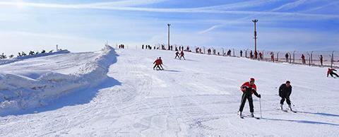 天津 宁河-七里海滑雪场,享雪中乐趣